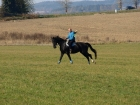 Pan Dvořák po roce na koni sedící a očividně si to užívající.