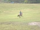 Jana a poník neustále na útěku