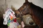 paní lysohlávka a její kůň